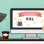 Jaki certyfikat SSL wybrać i kto powinien to zrobić?